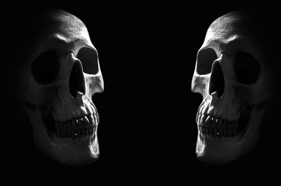 Anatomie Hintergrund Körper · Kostenloses Foto auf Pixabay