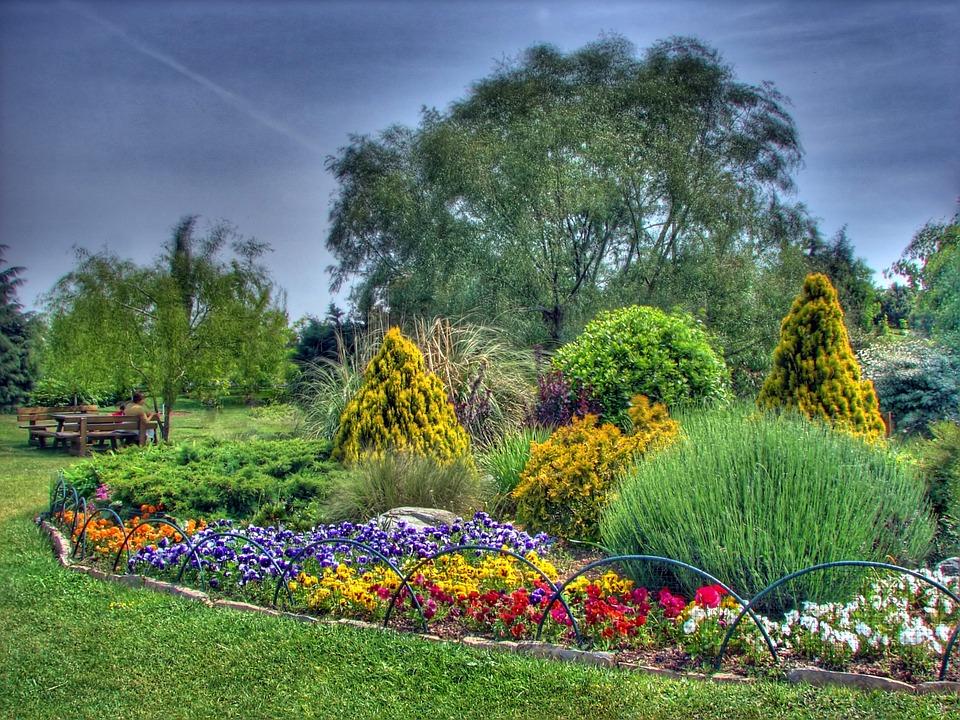 Photo gratuite istanbul turquie t fleurs image for Arboles y plantas de jardin
