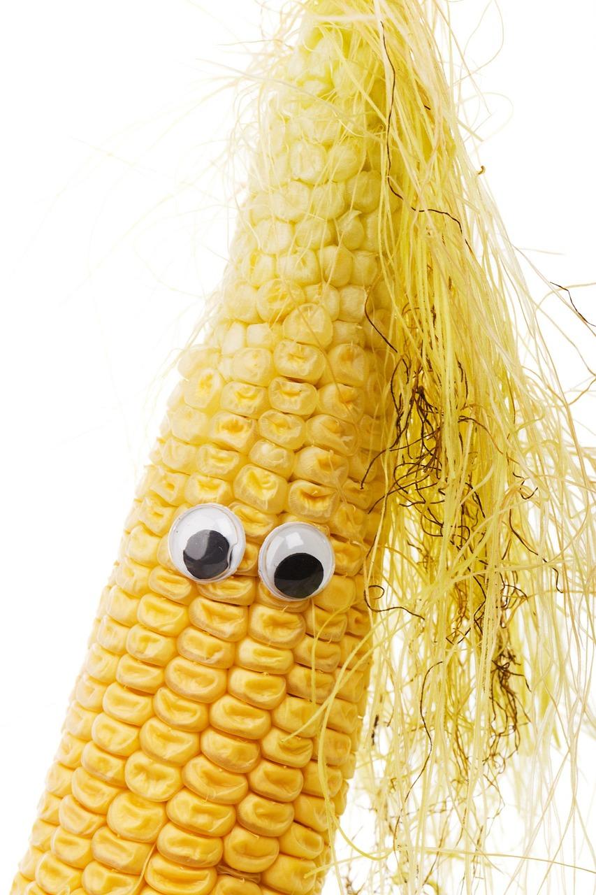 Картинки поздравления, картинки кукурузы смешные