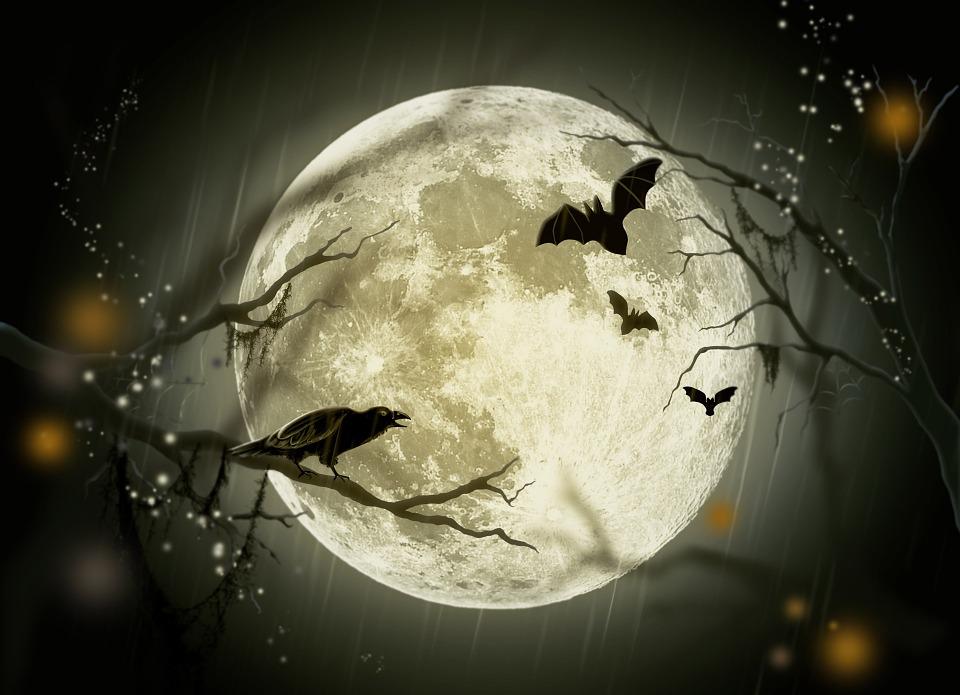 Halloween, Vacanze, Mistero, Fiaba, Luna, Corvo