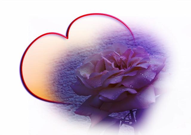 kostenlose illustration rose wasser schleife herz