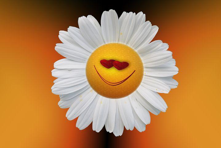 Любимой, цветочек прикольные картинки