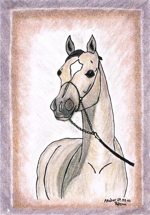 Beste Tekening Schilderij Paard - Gratis foto op Pixabay ID-59