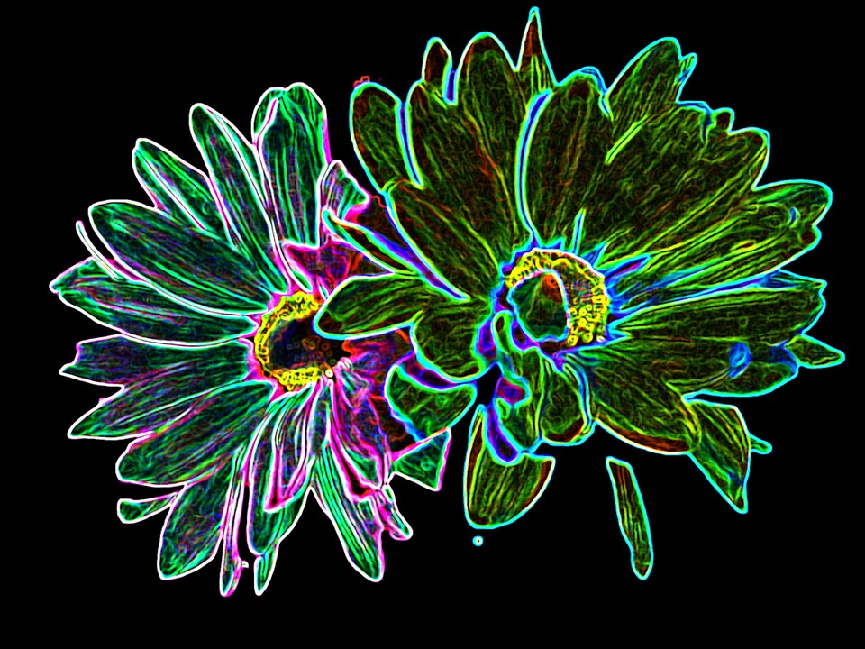 Flowers Neon Green - Free image on Pixabay