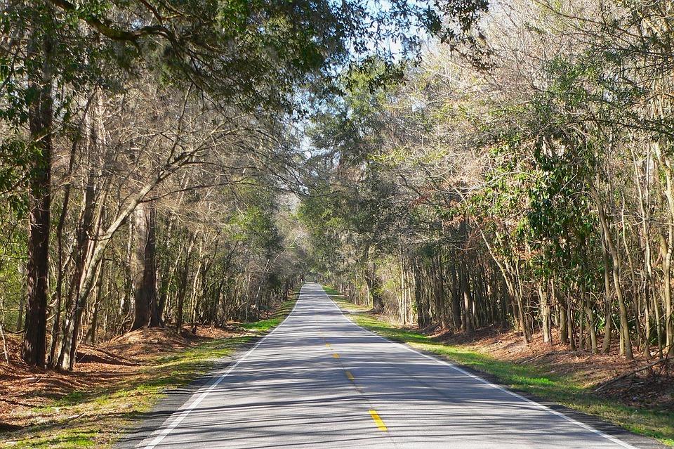 South Carolina Country Countryside 183 Free Photo On Pixabay