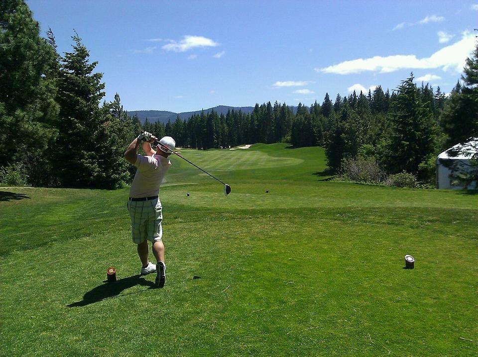 ゴルフ, ゴルファー, 男, スイング クラブ, ティー ショット, ドライブ, 森林, コース, 草, 芝