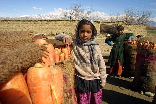 Afganistán, Niños, Zanahorias