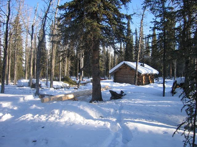 Parc National Denali Alaska 183 Photo Gratuite Sur Pixabay