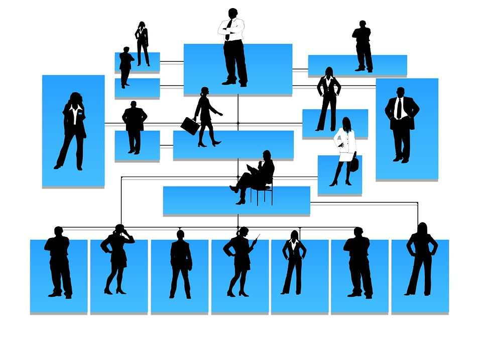 Medical Chart Clipart: Organization Chart - Free images on Pixabay,Chart