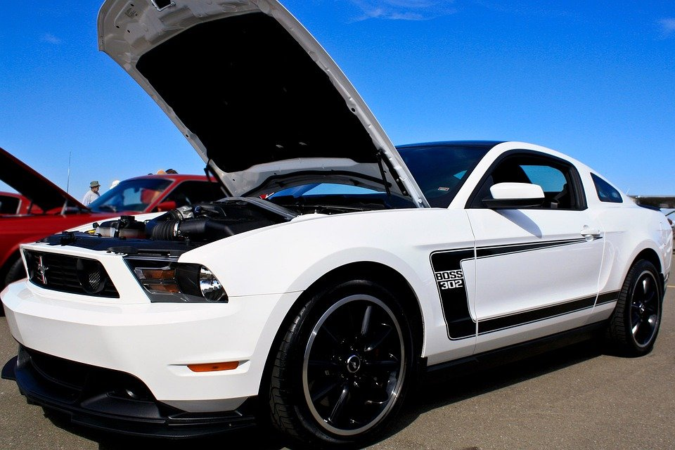 Free Photo Car Auto Ford Mustang Hood Free Image On