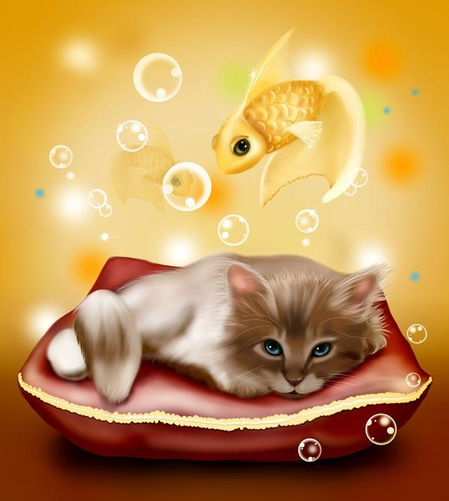 Unduh 100+  Gambar Kucing Dan Ikan Paling Bagus HD
