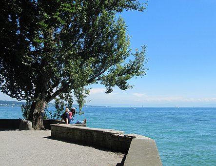 Lake Constance 340 Bodensee Mainau Insel Wasser Baume