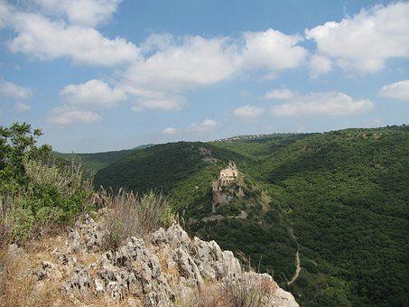 Israel, Landscape, Mountains, Forest