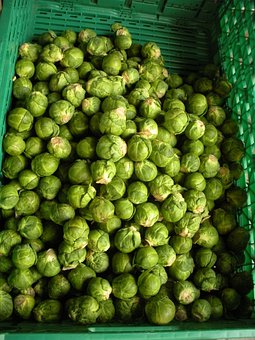 Greengrocer, Brussels Sprouts, Fresh