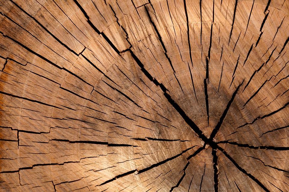 木材, 木のログ, ツリー, ブラウン, カット, 詳細, 自然, 古い, パターン, リング, 構造