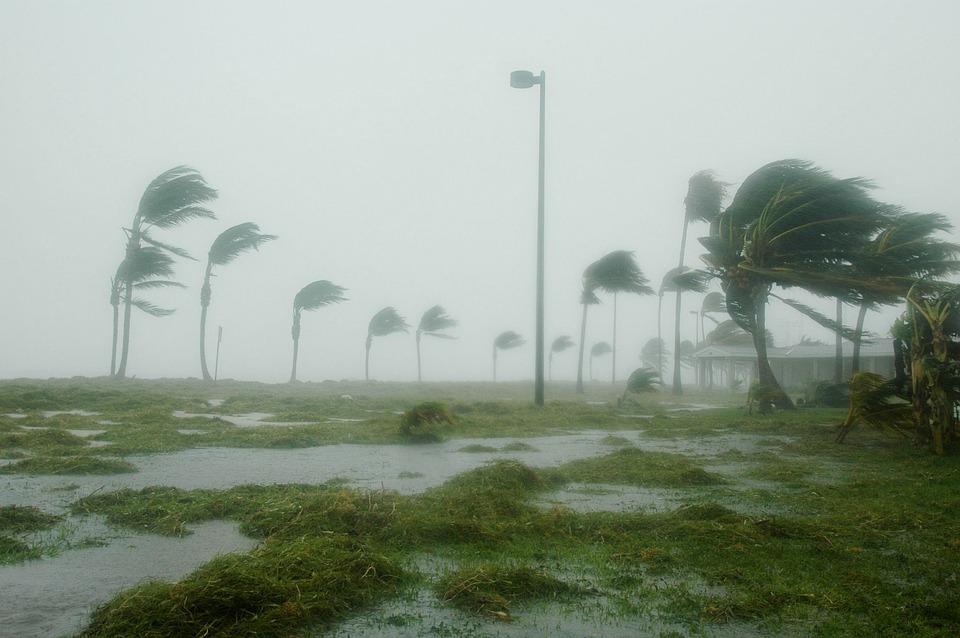 Key West, Florida, Huracán Dennis, Tormenta, Viento