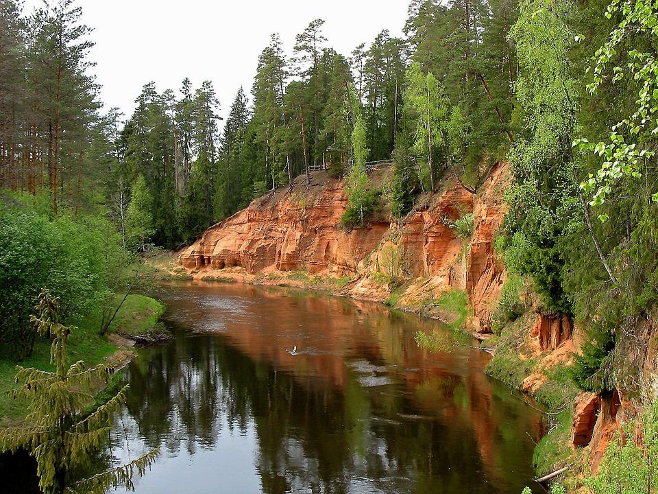 Fluss, Wald, Landschaft