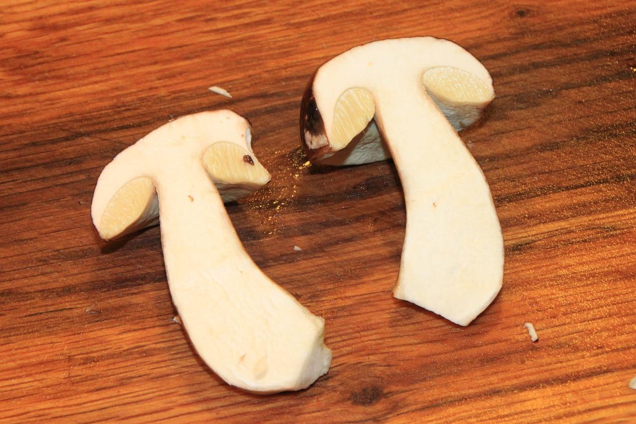 белый гриб в разрезе фото съемкам