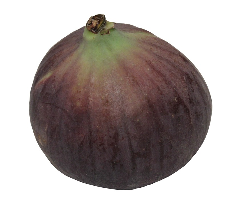 Carica, Ficus, Figs, Fresh, Raw, Shrub, Unripe, Fruit