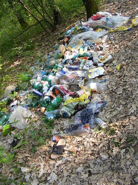 Ecology Forest Garbage 183 Free Photo On Pixabay