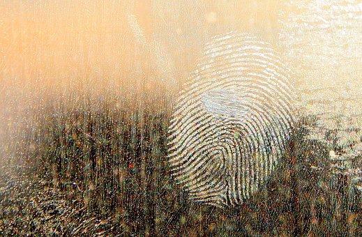Finger Print, Forensic