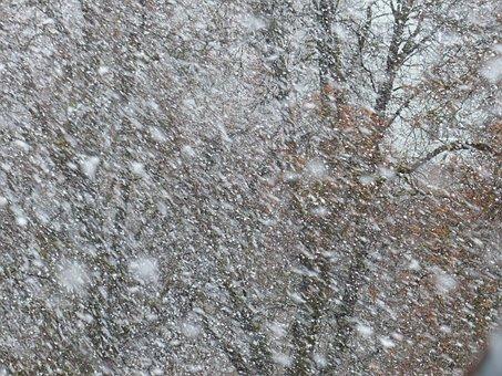 Blizzard, Snow Flurry, Snowflakes