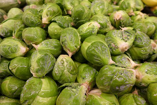 Brussel Sprouts, Vegetable, Green