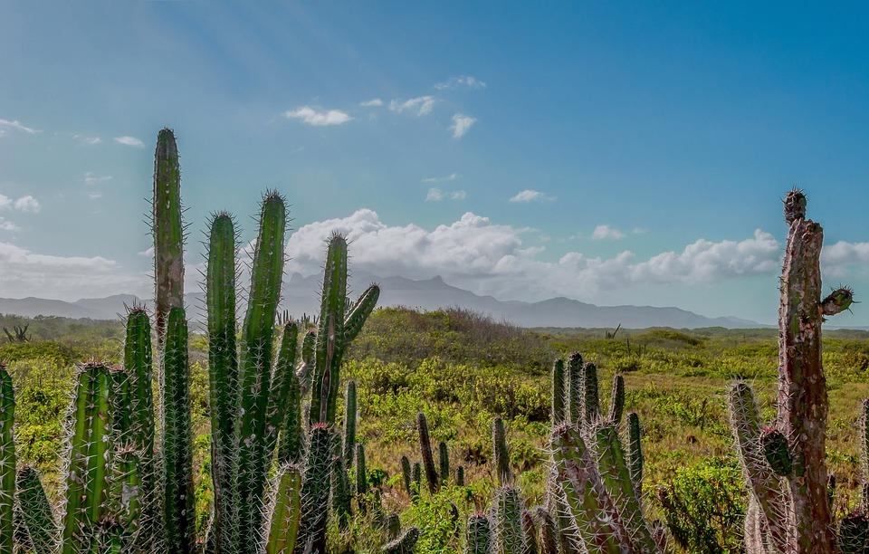 Venezuela Berge Himmel Kostenloses Foto Auf Pixabay