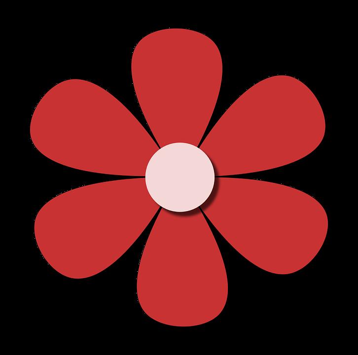 Flor Rojo Primavera Imagen Gratis En Pixabay