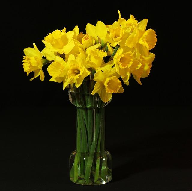 free photo flower vase daffodils jonquil free image on pixabay - Flower Vase