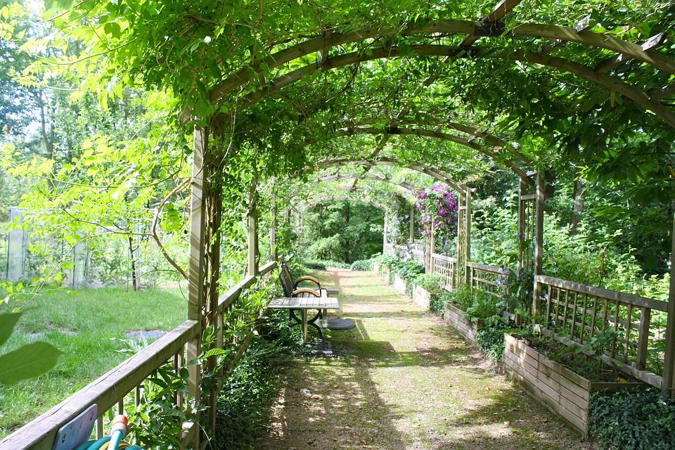 free photo pergola shady walk garden walk free image. Black Bedroom Furniture Sets. Home Design Ideas