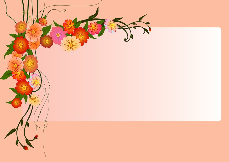 plano de fundo rosa flores