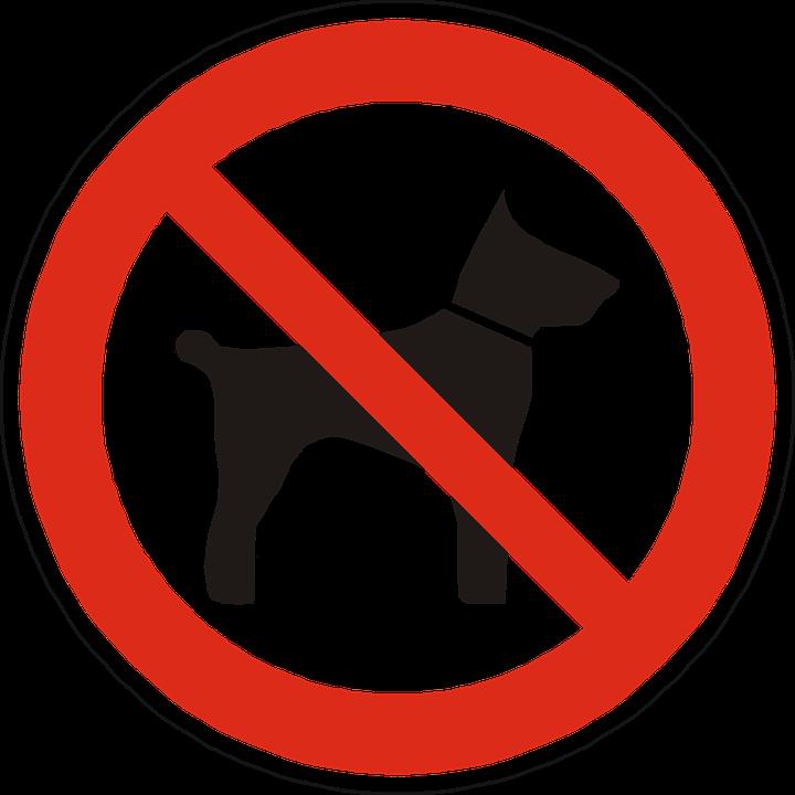 Interdit aux chiens vectoriel