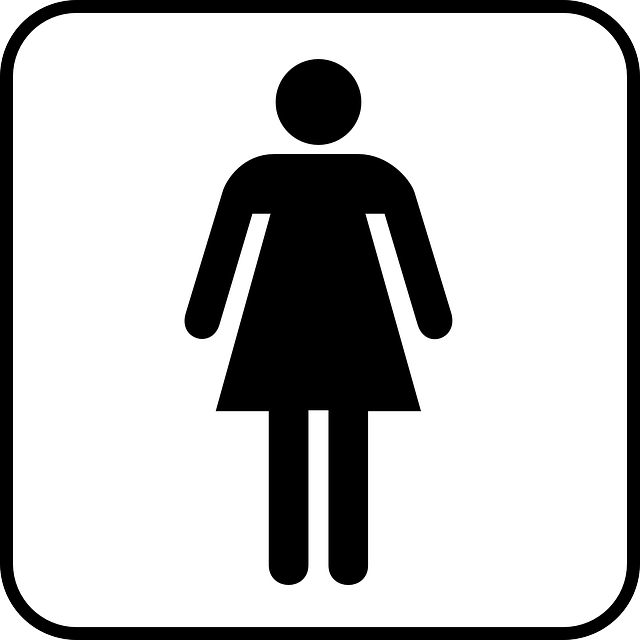 Vrouw Vrouwen Wc 183 Gratis Vectorafbeelding Op Pixabay