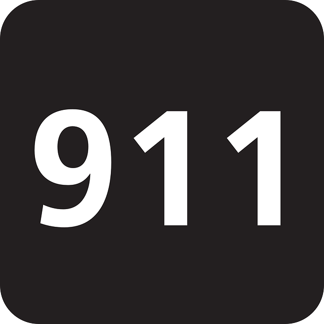 emergency 911 police telephone  u00b7 free vector graphic on