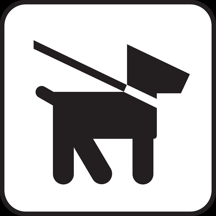dog leash lead  u00b7 free vector graphic on pixabay clip art walking feet clipart walking together