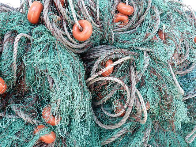 рыболовной сети что надо
