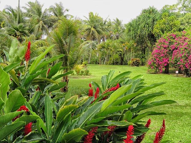 Free Photo: Guan, Landscape, Scenic, Plants