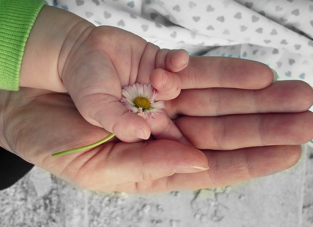 mother and baby hands holding a flower