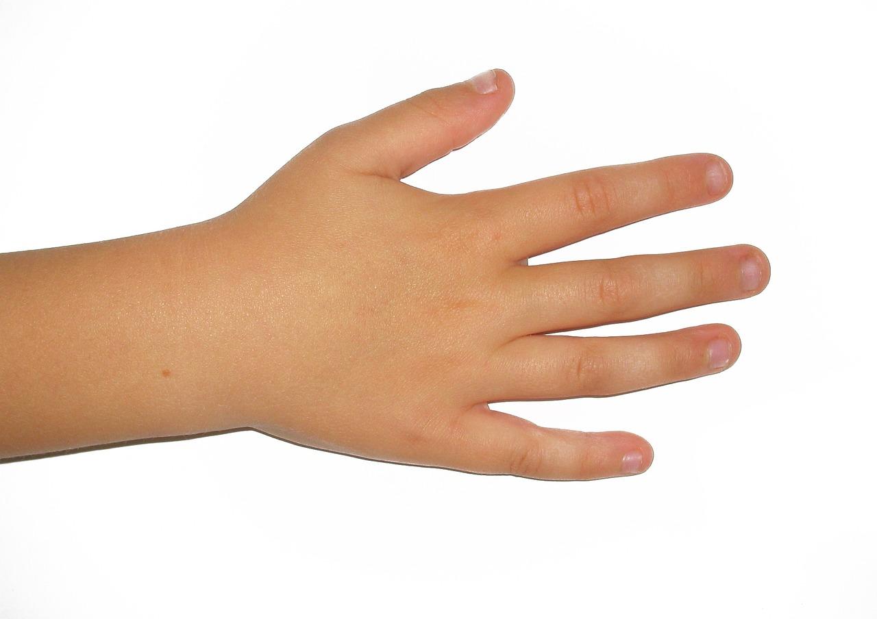 егэ картинки про правую руку покупал рынке сферические