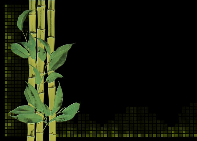 bamboo plant digital creation  u00b7 free image on pixabay