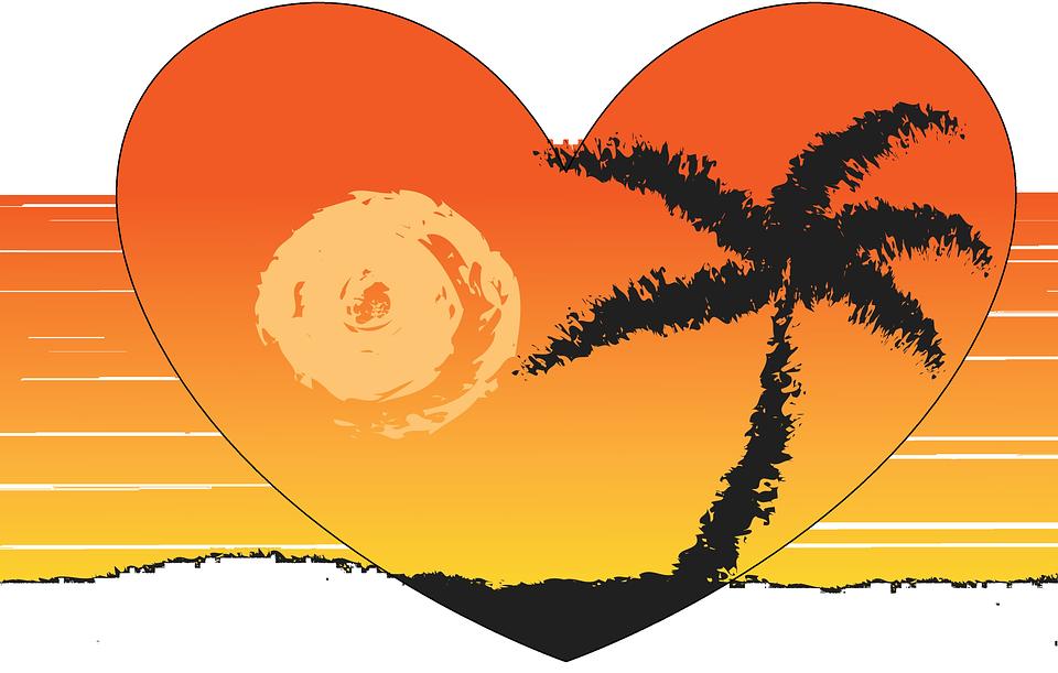 illustration gratuite plage  coucher de soleil  palmier clip art palm tree plan view clip art palm trees free