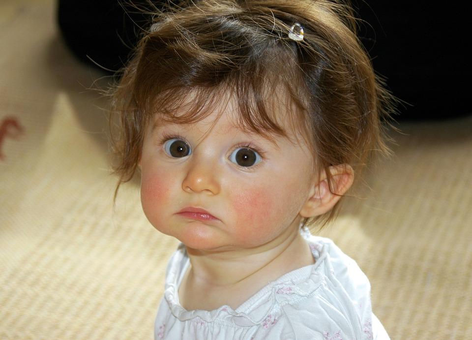 little girl portrait face big free photo on pixabay