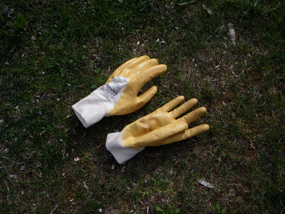 Free photo Gloves Gardening Garden Glove Free Image on