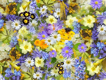 Spring Flowers, Flowers, Collage, Floral