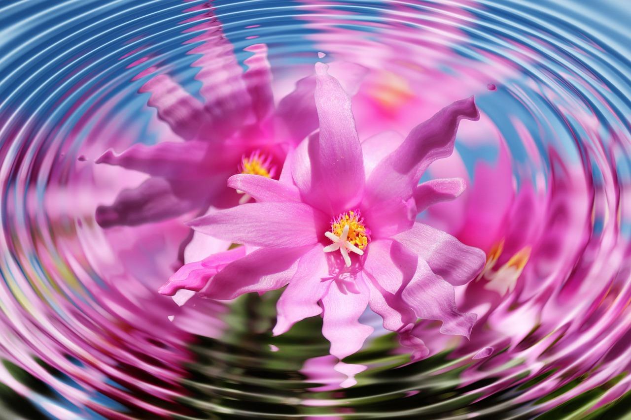 картинки психологии цветы