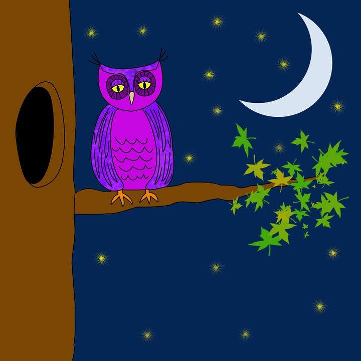 owl purple night  u00b7 free image on pixabay wing vector designs wings vector clip art
