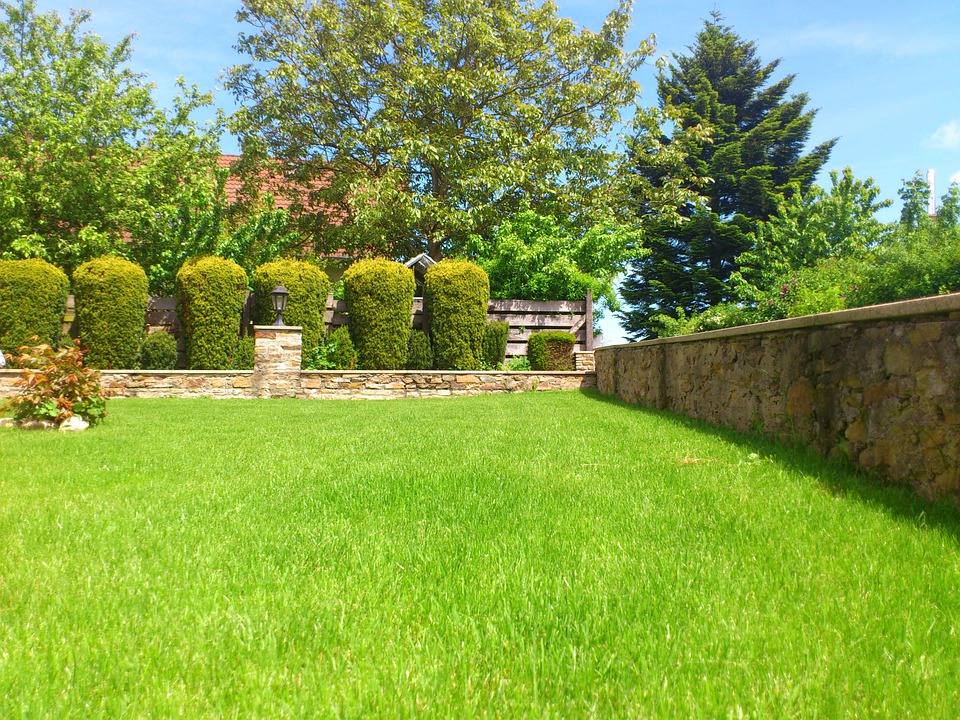 Free Photo Meadow Garden Summer Front Yard Free