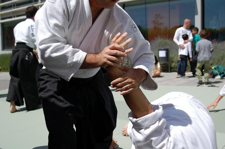 総合格闘技, 合気道, スポーツ, スポーツ イベント, 格闘技, スポーツの表示, 手, 防衛, 競争