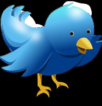 Twitter, Tweet, Bird, Funny, Cute, Blue